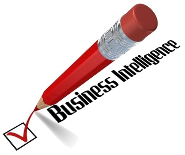 ERP business intelligence
